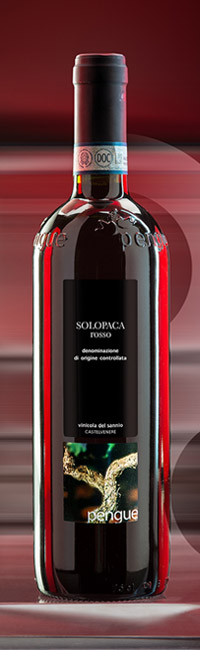 1P_SolopacaDopnew