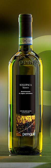 5P_SolopacabDopnew